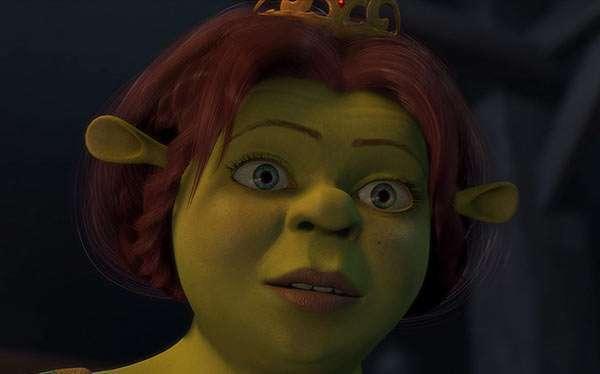 DIY Shrek Princess Fiona Costume