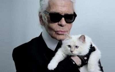 DIY Karl Lagerfeld Costume