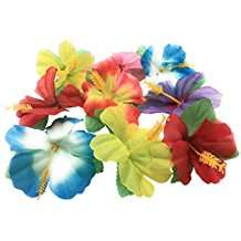 Motto Party Ideas - Hibiscus Flowers