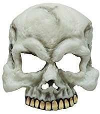 DIY Halloween Costume Idea - Skull Mask