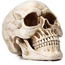 DIY Halloween Costume Idea - Skull