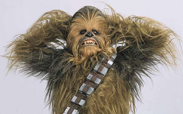 DIY Chewbacca Star Wars Costume