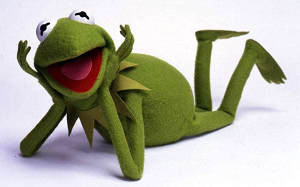 DIY Sesame Street Kermit the Frog Costume