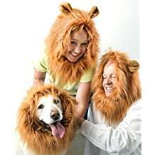 DIY Lion Halloween Costume Idea - Wig