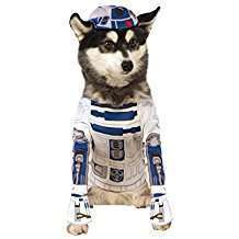 DIY Star Wars R2D2 Halloween Dog Costume Idea