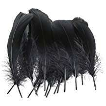 DIY Halloween Costume Idea - Black Feathers