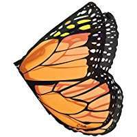 DIY Halloween Costume Idea - Butterfly Wings