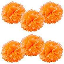 DIY Halloween Costume Idea - Orange Pom Poms