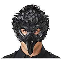 DIY Halloween Costume Idea - Raven Mask