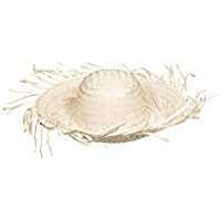 DIY Halloween Costume Idea - Scarecrow Straw Hat