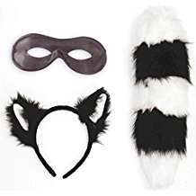 DIY Halloween Costume Idea - Skunk Set