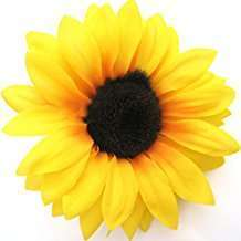 DIY Halloween Costume Idea - Sunflower Clip