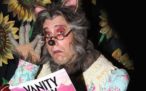Diy Big Bad Wolf Halloween Costume Idea Maskerix Com