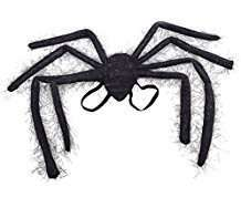 DIY Halloween Costume Idea - Spider Wings