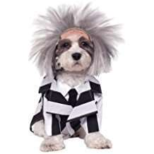 Amazon - Beetlejuice Halloween Dog Costume