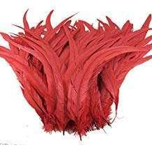 Amazon - DIY Halloween Costume Idea - Red Feathers