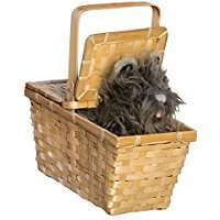 Amazon - DIY Halloween Costume Idea - Toto With Basket