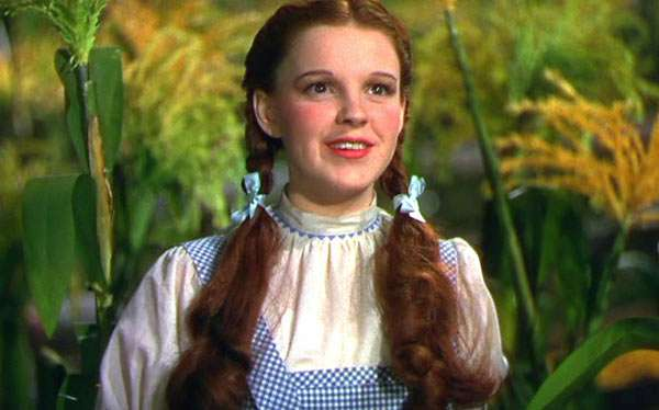 DIY Wizard of Oz Dorothy Halloween Costume Idea