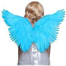 Amazon - DIY Halloween Costume Idea - Blue Wings