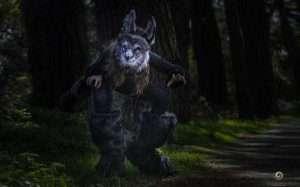 Etsy - DIY Werewolf Halloween Costume Idea