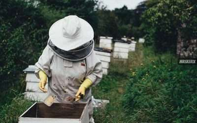 DIY Bee Keeper Costume