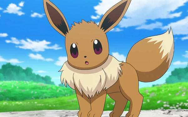 DIY Pokemon Eevee Costume