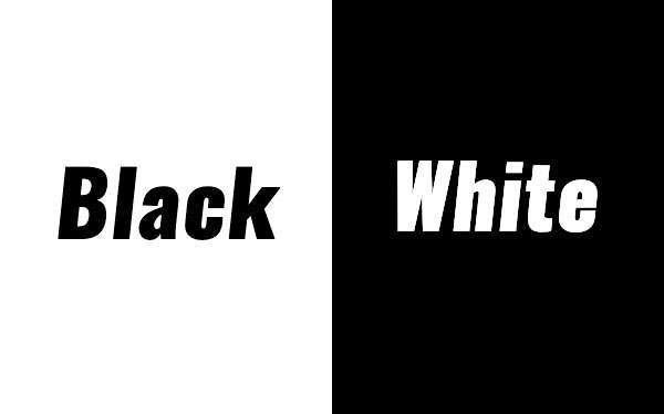 Black & White Theme Party Idea