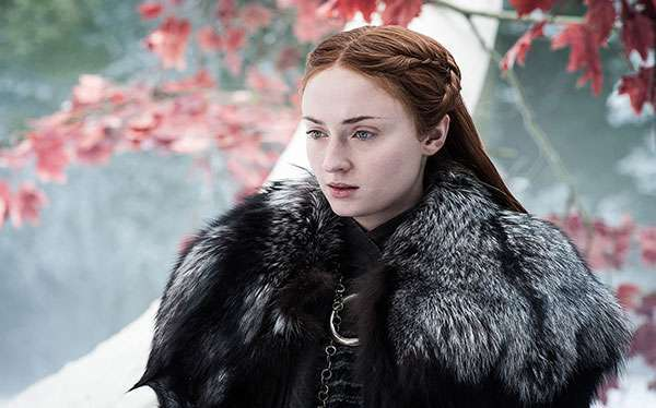 DIY Game of Thrones Sansa Stark Costume Idea