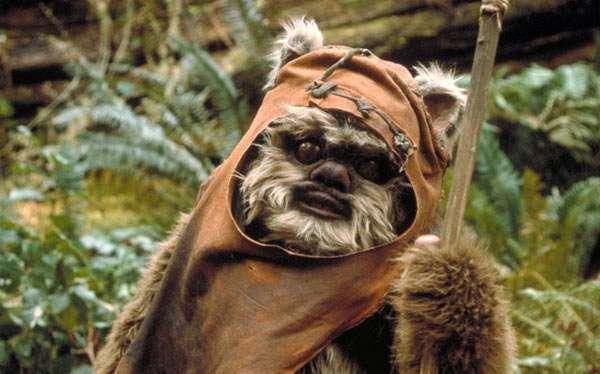 DIY Star Wars Ewok Costume